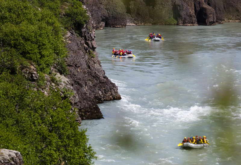 Hvalsafari-Riverrafting9